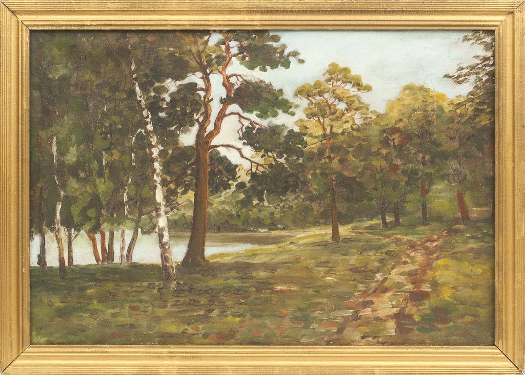 Parka ainava