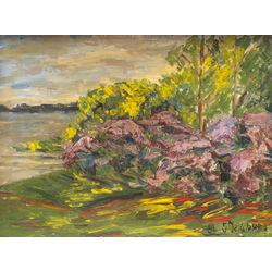 Lilac in Aplokciems