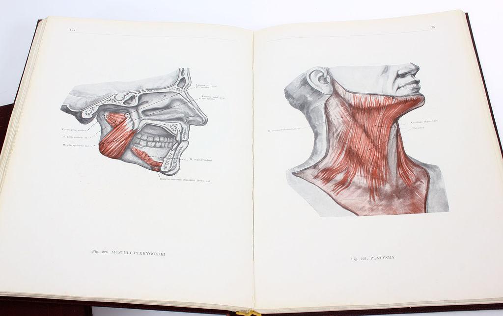 Анатомический атлас человеческого тела цена 3 sējumi