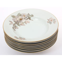 Porcelain soup plates 8 pcs.
