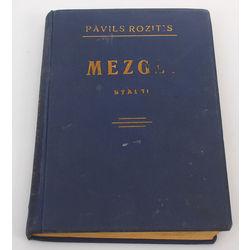 Pāvils Rozītis, Mezgli(stāsts)