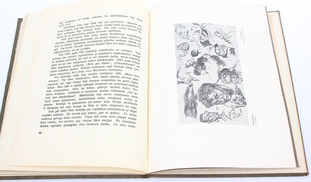 """Monogrāfiju virkne """"Latvju Māksla - Alfrēds Plīte-Pleita"""""""