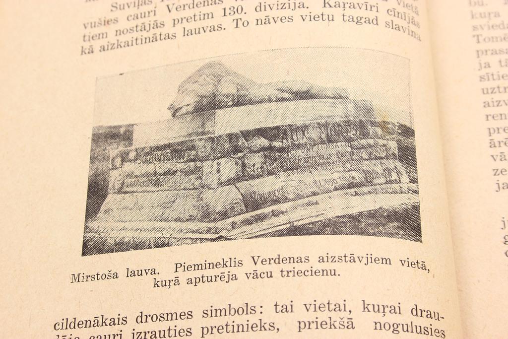 Edvīns Mednis, Saules Viesos