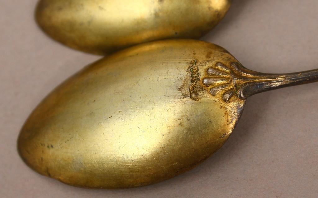 Sudraba karotes (5 gab.)