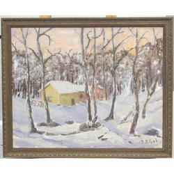 Mājas ziemā