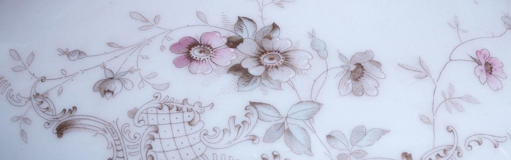 Porcelāna terīne