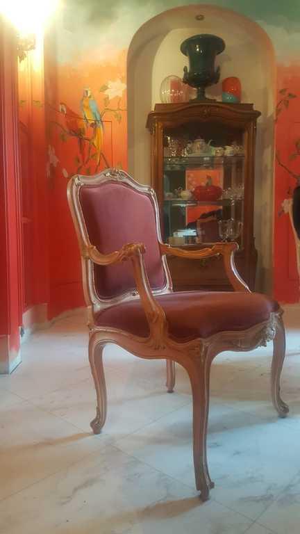 Riekstkoka krēsli (6 gab.)