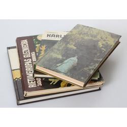 4 grāmatas - Stāsti par krievu māksliniekiem, Latvijas etnogrāfiskajā brīvdabas muzejā, Rietumeiropas glezniecība, Kārlis Sūniņš