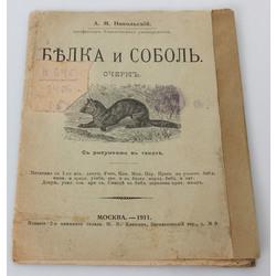 А.М.Никольский, Белка и соболь