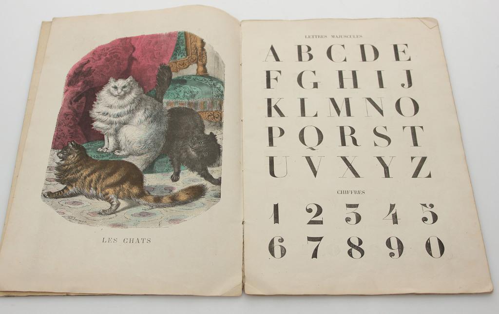 Le Livre  D Images Nouvel Alphabet
